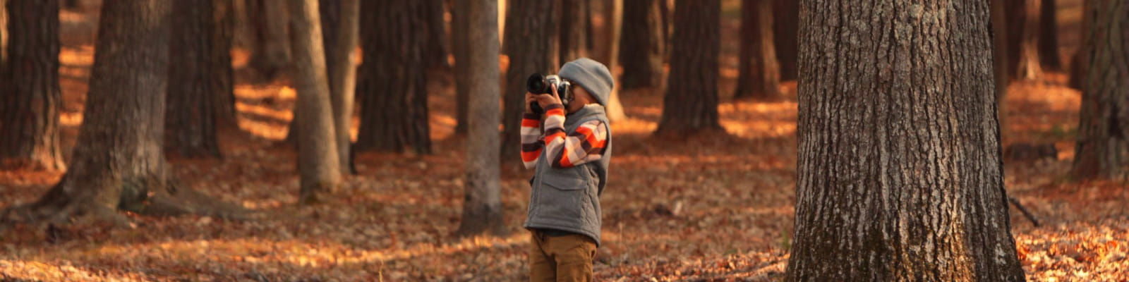 enfant qui prend la forêt en photo