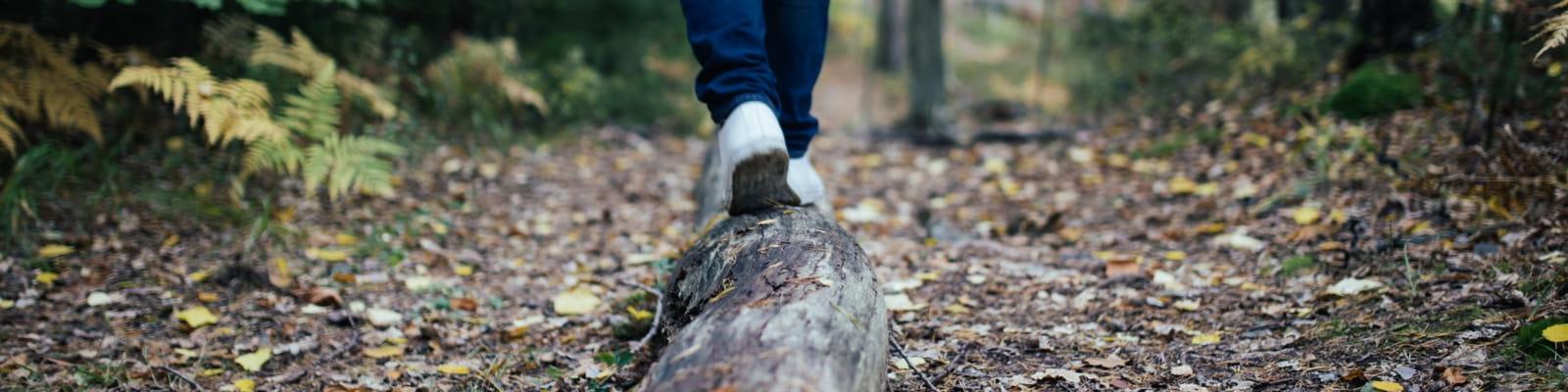 personne qui marche sur un tronc d'arbre