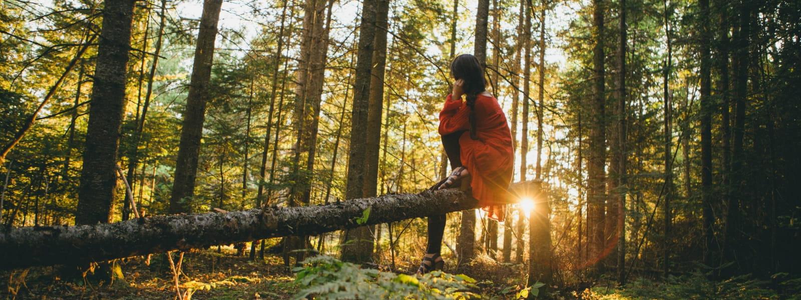 Femme se reposant sur un arbre en Sologne