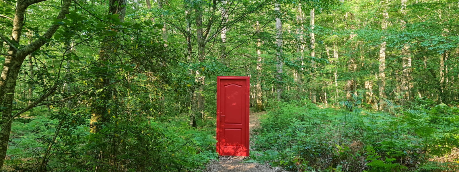 Porte rouge en Forêt