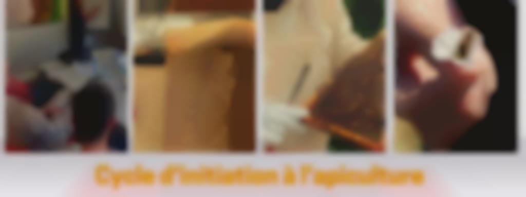 Initiation à l'apiculture (Famille Vacher + APINOV) 29 mai, 26 juin et 28 août 2021
