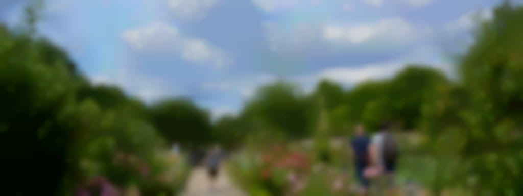Visite parc, jardin et potager du château de la bussière