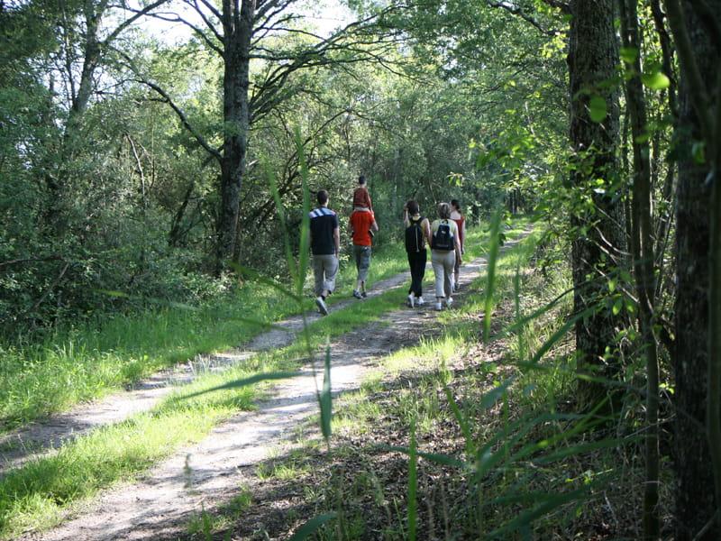 Balades et randonnées en Sologne
