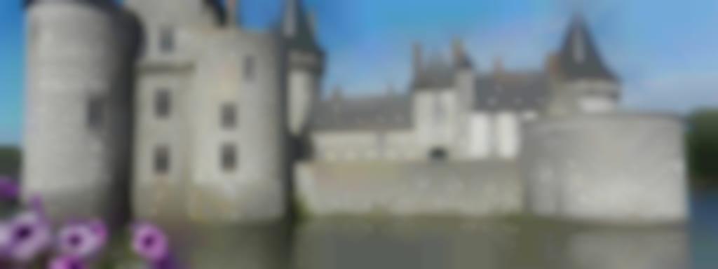 Visite de la ville de Sully-sur-Loire