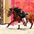 Spectacle chevaux et rapaces au château de Chambord - François 1er, le Roi-Chevalier
