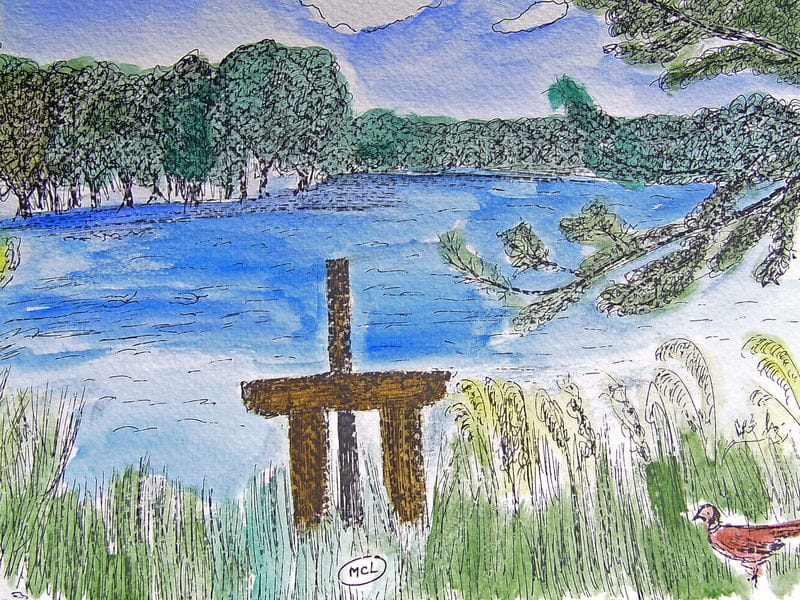 Sortie nature - Initiation au dessin nature à Saint Viâtre