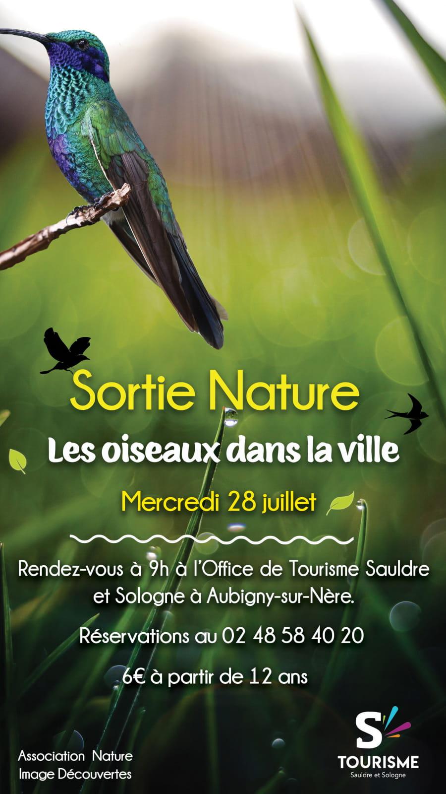 Sortie nature : Les oiseaux dans la ville