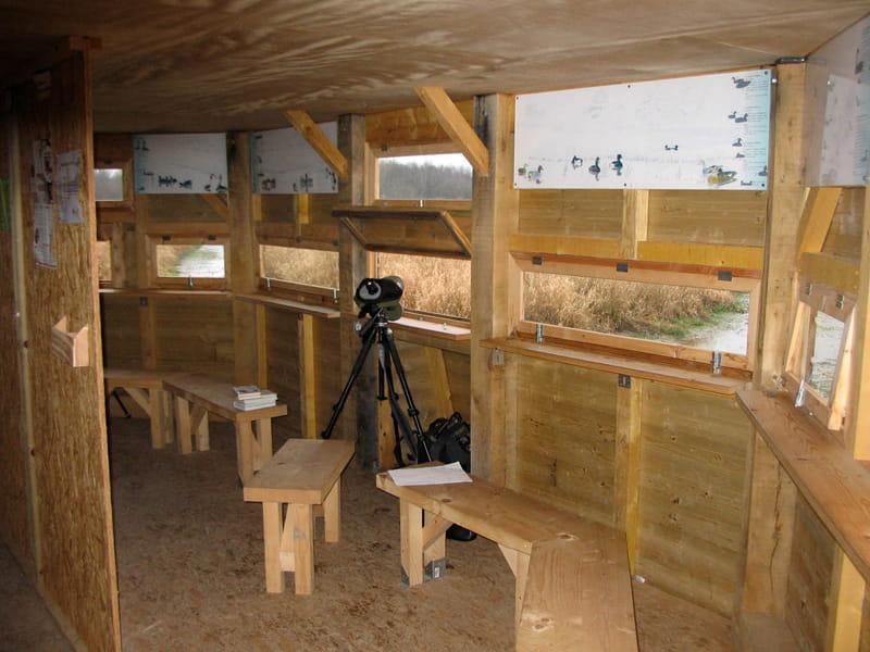 Balade nature avec le Conservatoire d'espaces naturels - Oiseaux hivernants et premiers migrateurs