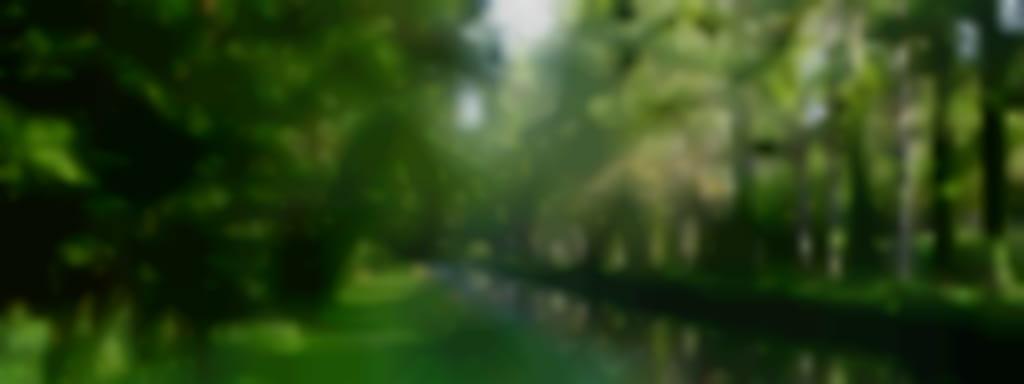 Entre rivière et canal