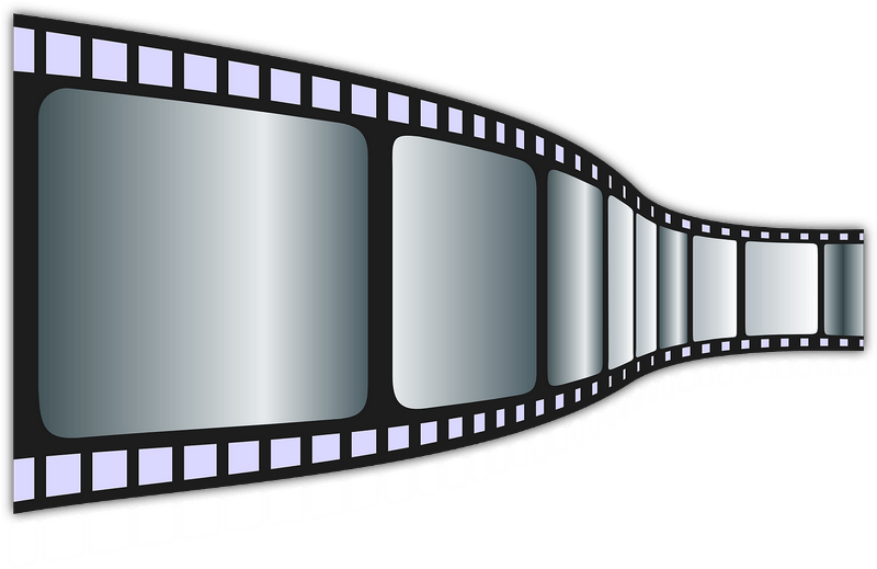 Festival des étangs - Film 'L'année de l'étang' de Laurent Charbonnier