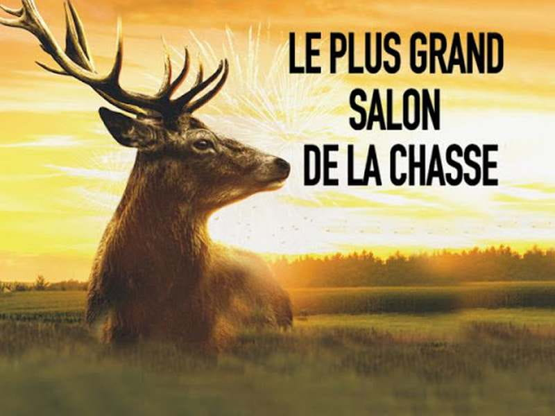 Game Fair en Loir-et-Cher - salon de la chasse