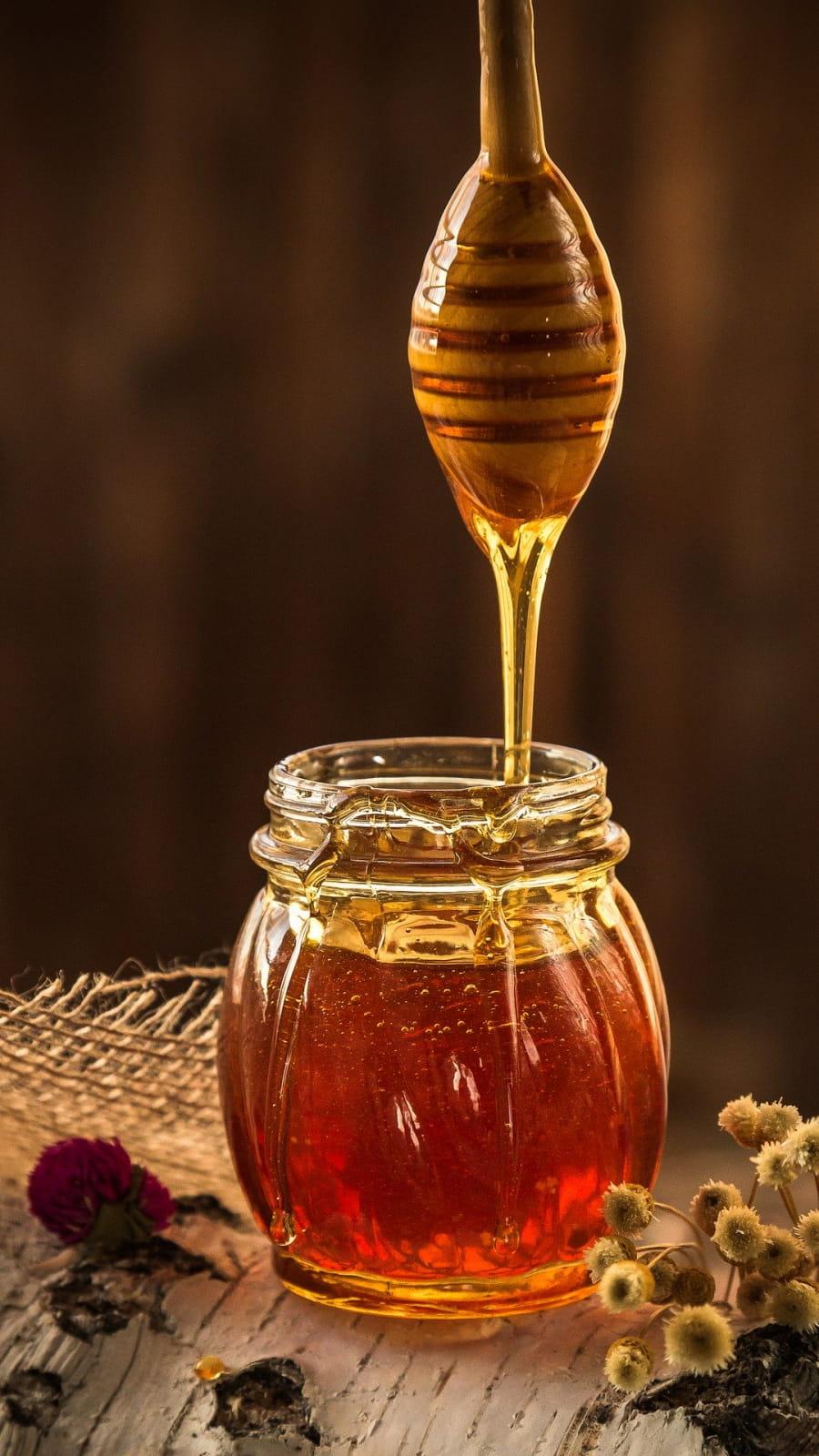Miel de Sologne