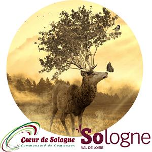 Service tourisme - Communauté de Communes Coeur de Sologne