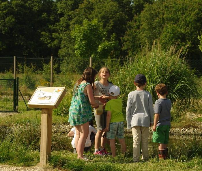 Instants Nature - Parc pédagogique 'de plumes et d'eau à Montrieux-en-Sologne