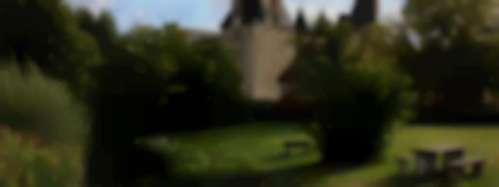 Monument Jeu d'Enfant au Château de Fougères-sur-Bièvre
