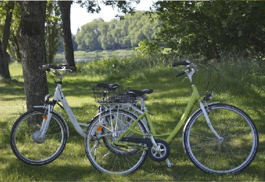 Location de vélos - Camping d'Olivet