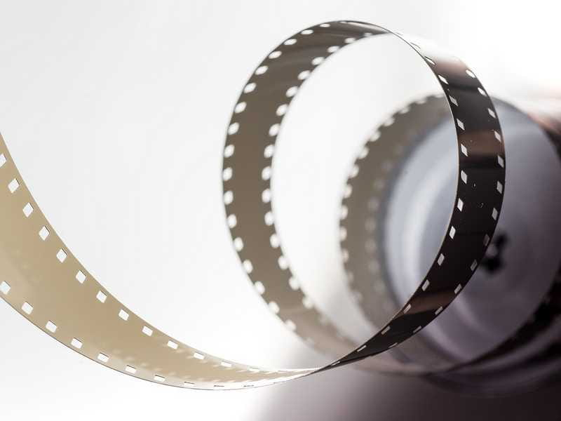 Soirée Projection de film avec Sologne Nature Environnement
