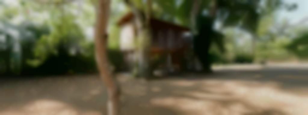 Cabane perchée de Lousson