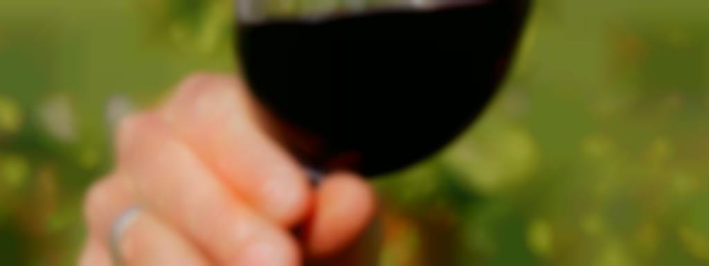 Pique-nique chez le vigneron indépendant au Domaine Jérôme Marcadet à Feings