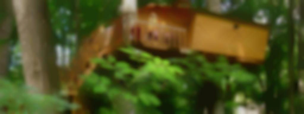 Cabanes dans les arbres - L'Augis Nature